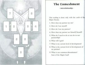the-enmeshment