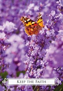 cards_butterfly21