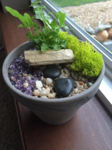 My fairy garden for my bedside table.
