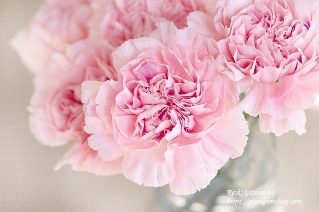 flowers-1325012_640.jpg